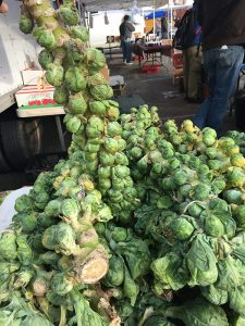 Musser Farm brussel sprouts at farmers market