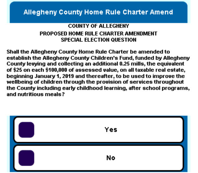 Allegheny County Home Rule Charter Amendment Children's Fund ballot question