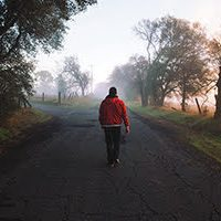 man-tree-nature-walking-person-sunset-road-mist-sunlight-morning-evening-autumn-season-atmospheric-phenomenon-1063042-get.pxhere-fi