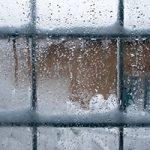 photo of frozen window by Igor Stevanovic